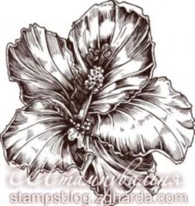 flowers, stamp, штамп, квіти, орхідея