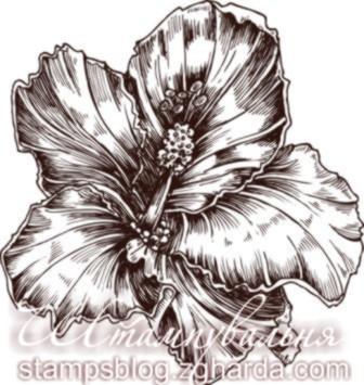 Flowers st штамп квіти орхідея