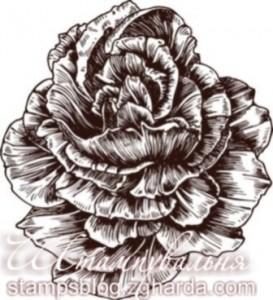 Штамп, півонія, пион, квіти, цветы, flowers, scrapbooking, cards, листівки