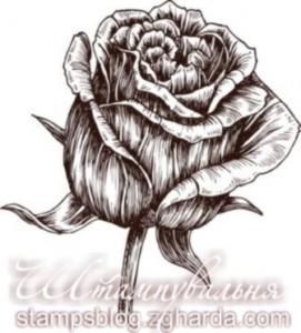 stamp, flower, листівки, троянди, троянда, штамп для скрапбукінгу і листівок ручної роботи