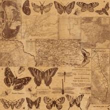 карти-метелики
